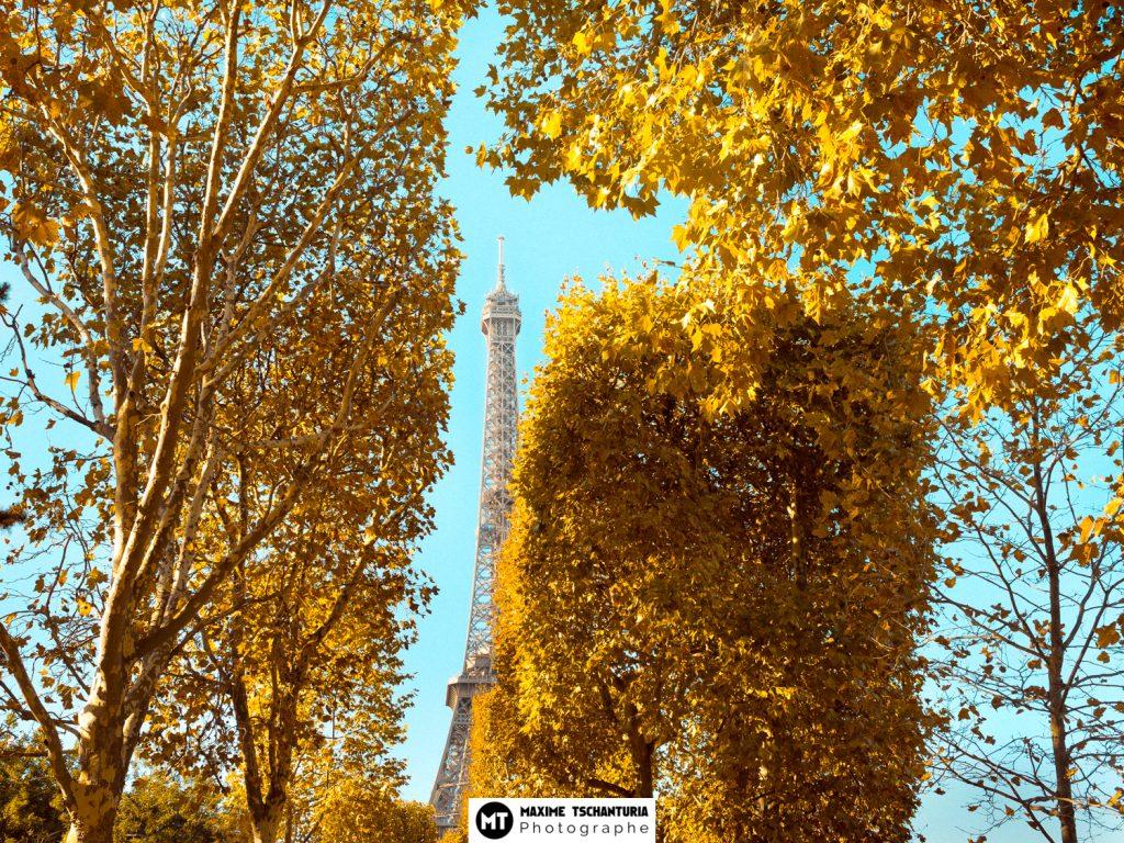 Dame de fer - Automne parisien